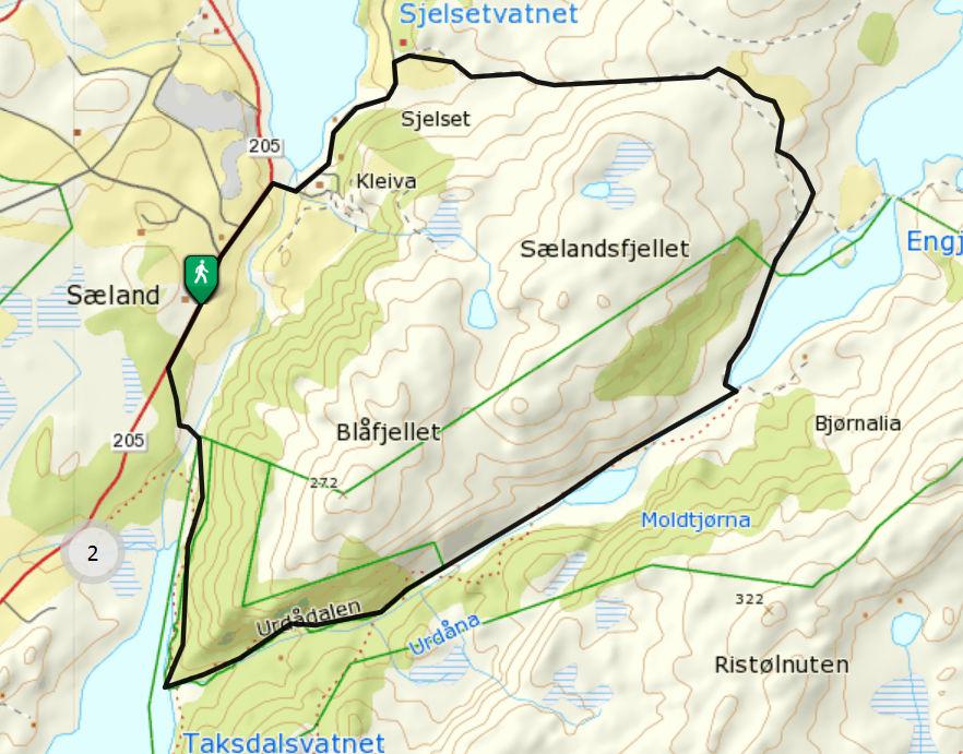 Selandsskogen_01