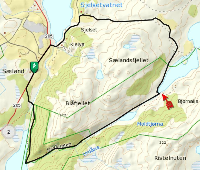 Selandsskogen_03