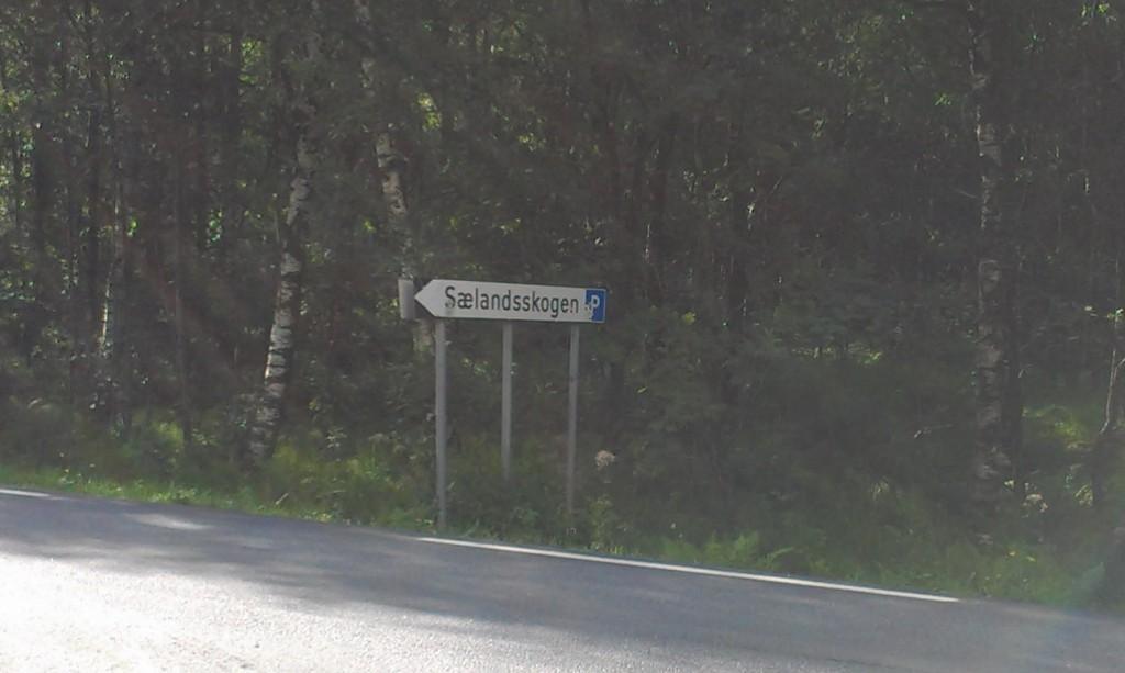 Selandsskogen_06