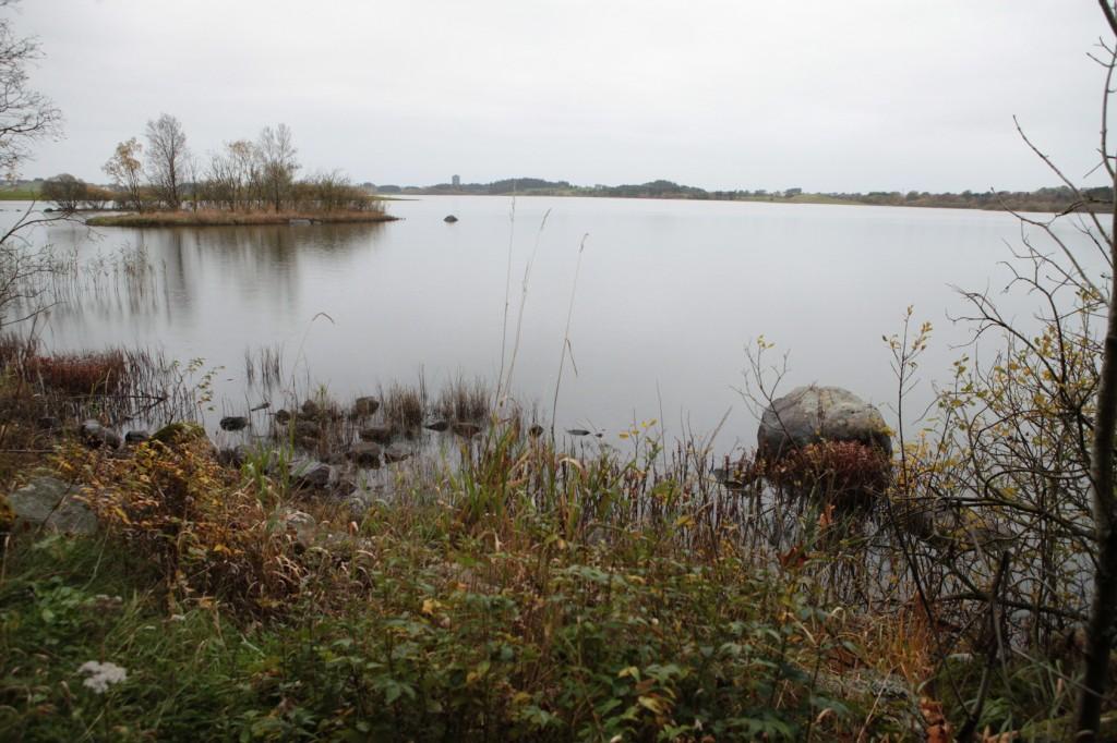 Njåskogen_09