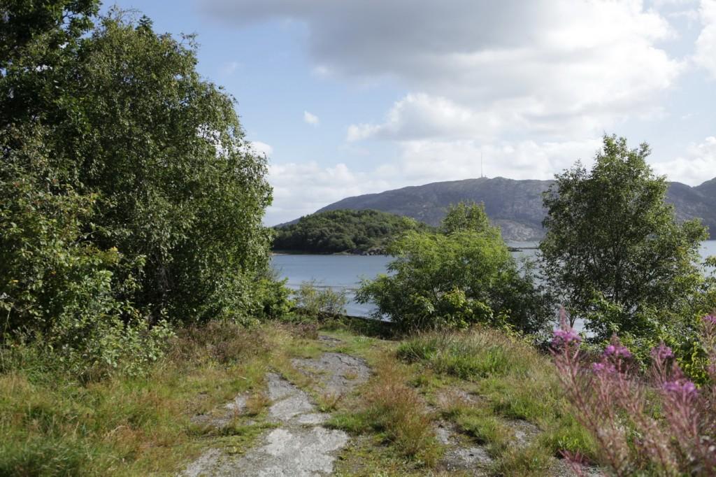 Hinna_Gandsfjord-ruta_07