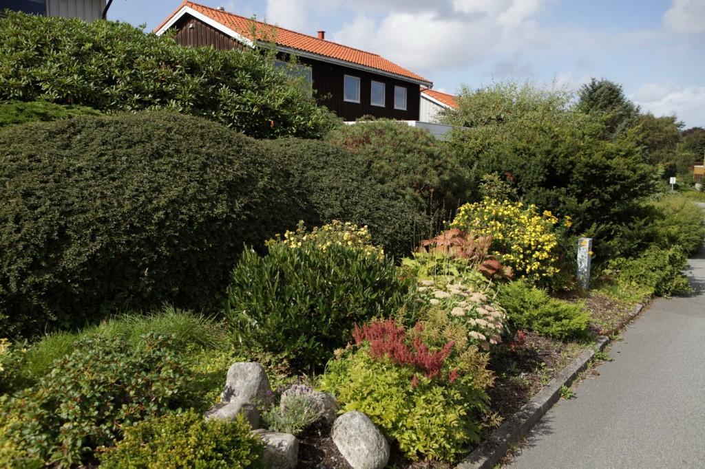Hinna_Gandsfjord-ruta_20
