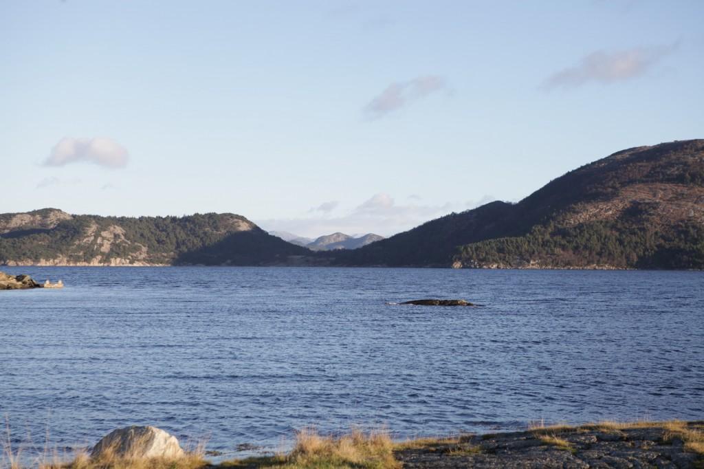 Hinna_Gandsfjorden_15