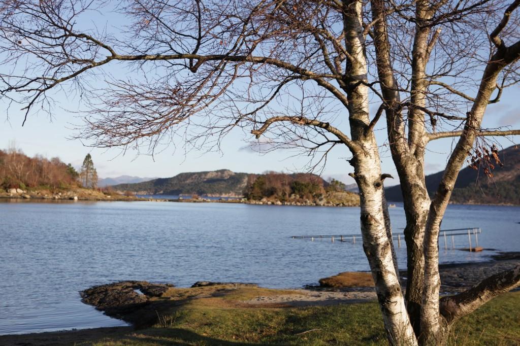 Hinna_Gandsfjorden_18