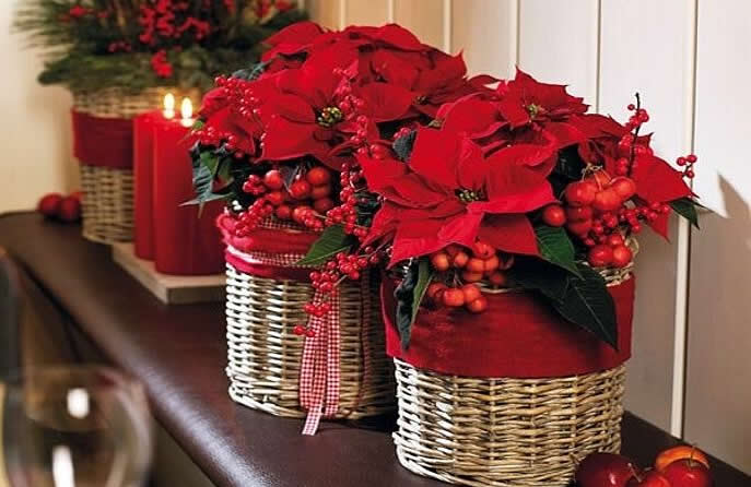 Рождественские цветы своими руками