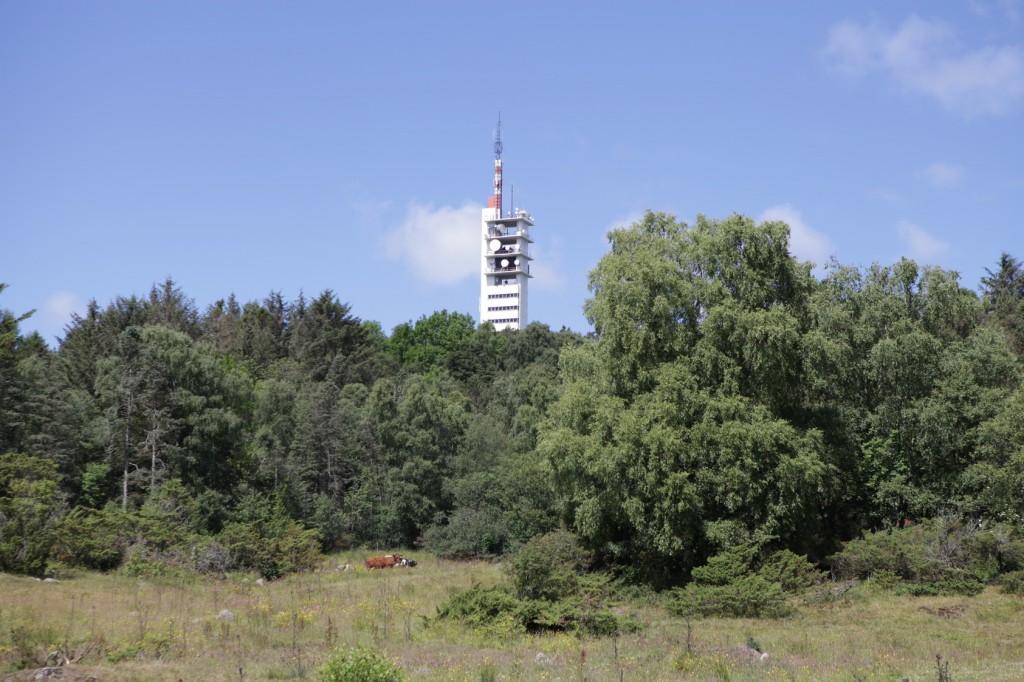 Ullanhaug_41