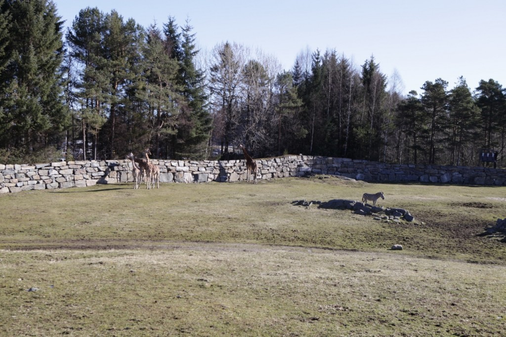 Kristiansand_Dyreparken_005