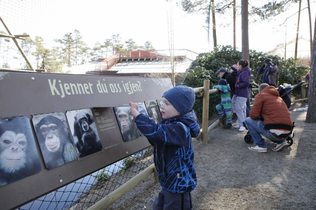 Kristiansand_Dyreparken_079