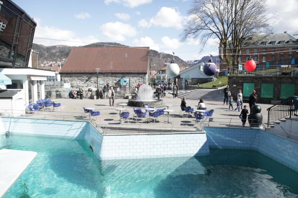 Bergen_097