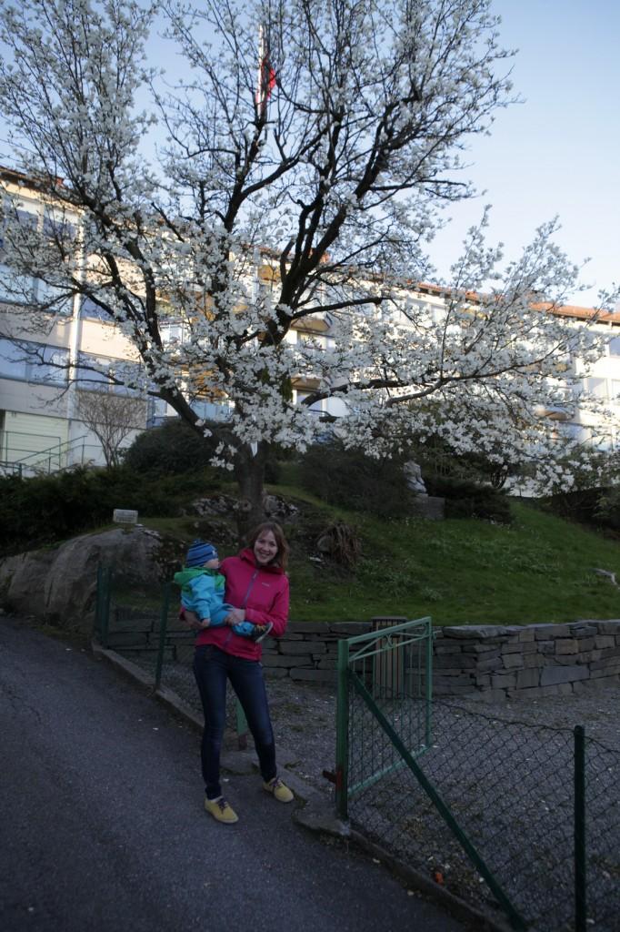 Bergen_149