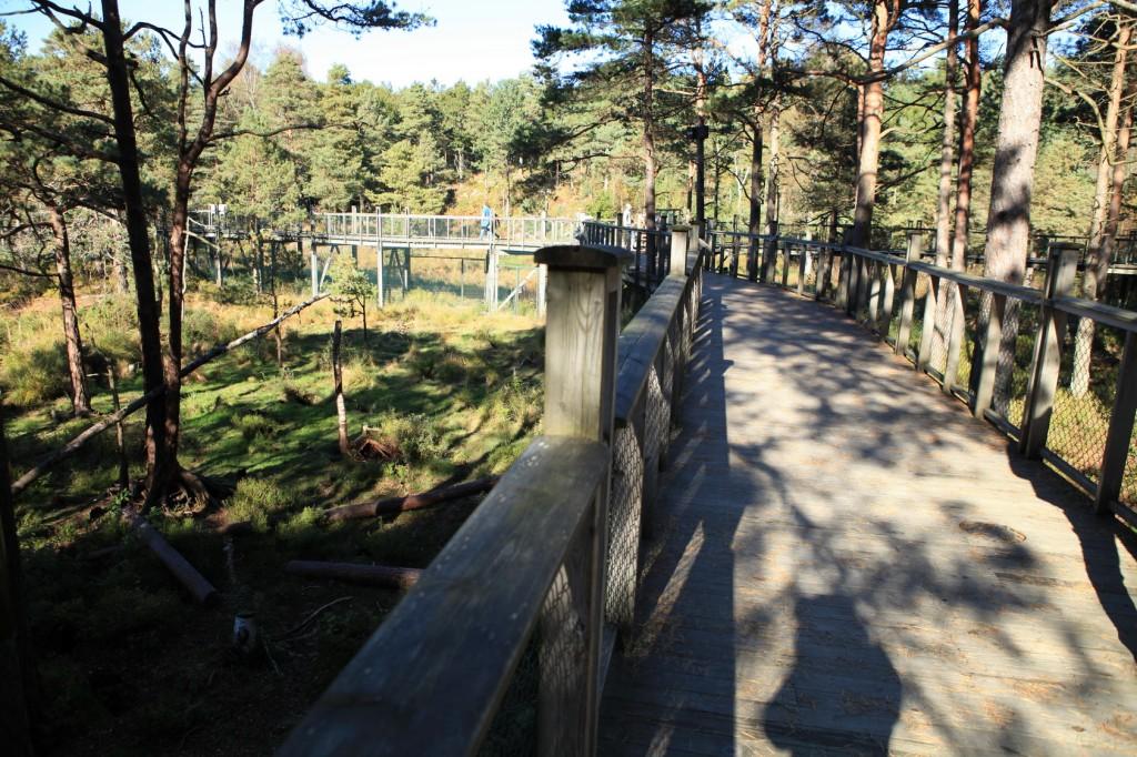 Kristiansand_Dyreparken_57