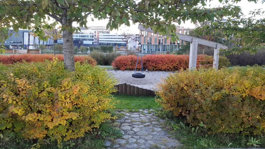 autumn_stavanger_04