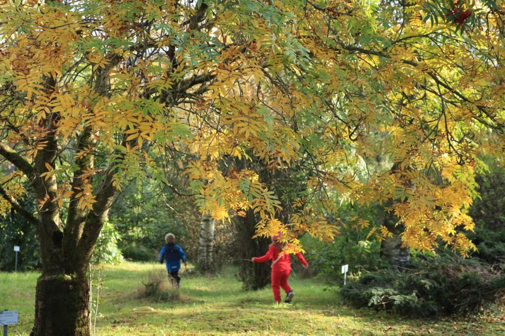 autumn_stavanger_16