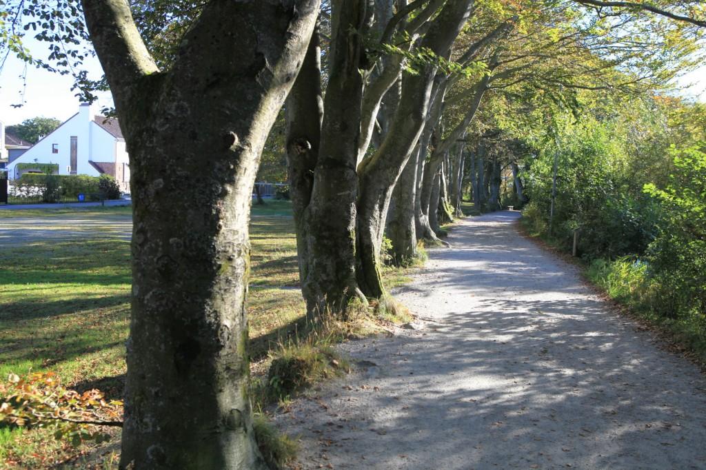 autumn_stavanger_35