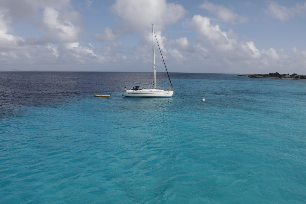 003 205 Klein-Curacao_resize