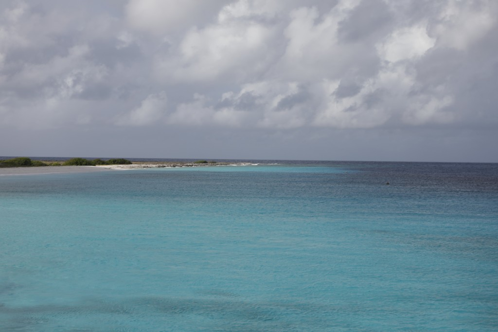 005 207 Klein-Curacao_resize