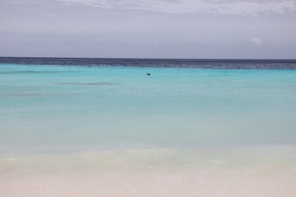 006 016 Playa Porto Marie_resize