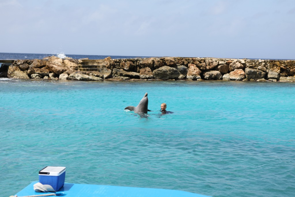 012 078 Curacao Sea Aquarium_resize
