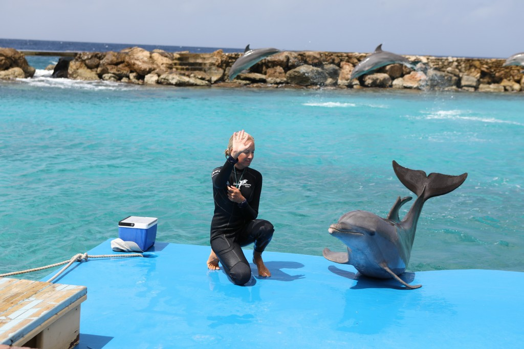 016 082 Curacao Sea Aquarium_resize