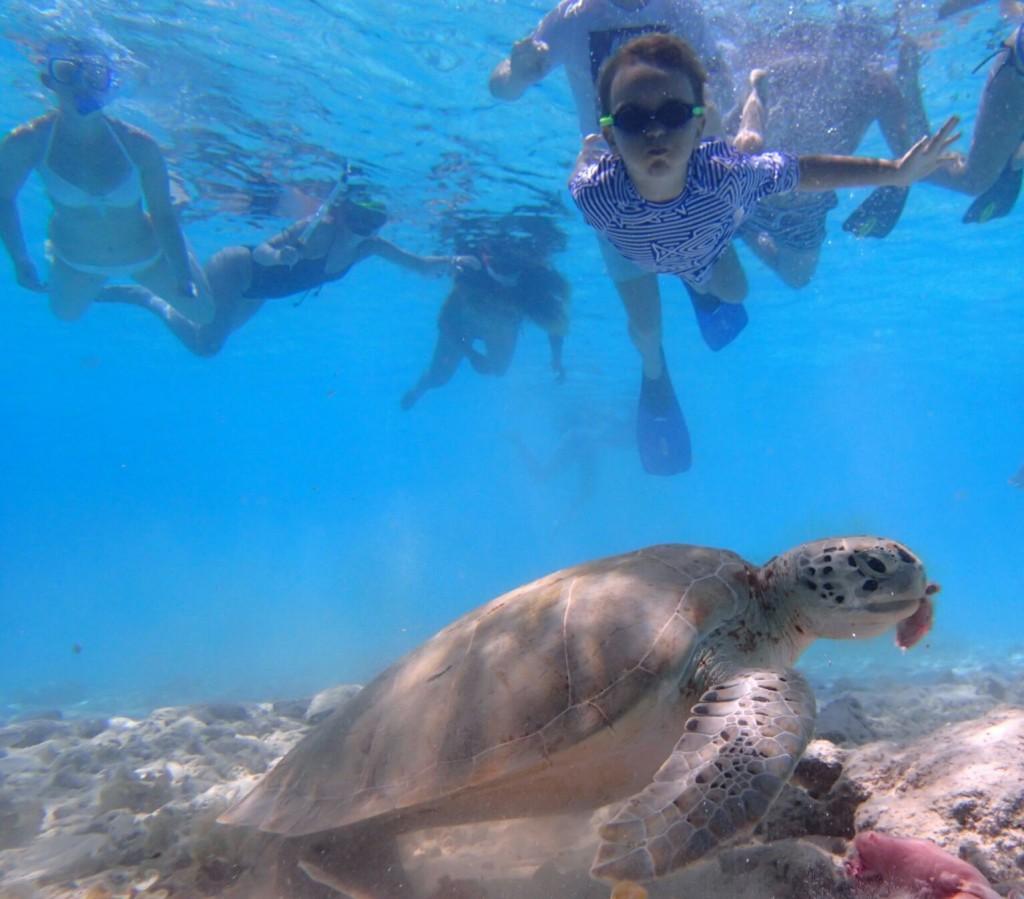 016 202 Under sea