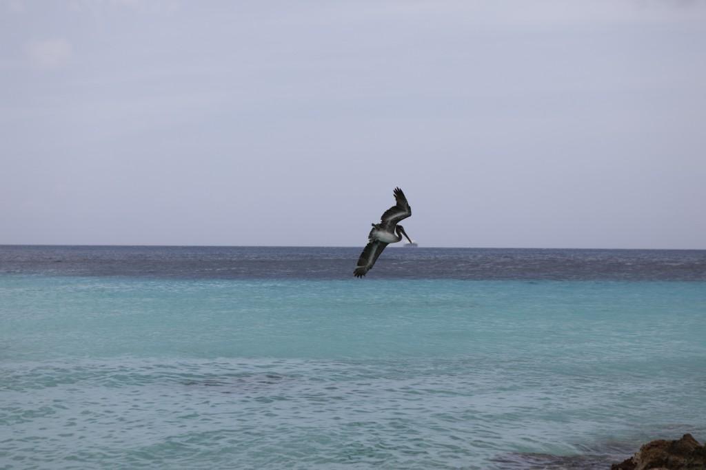 021 257 Playa Porto Marie_resize