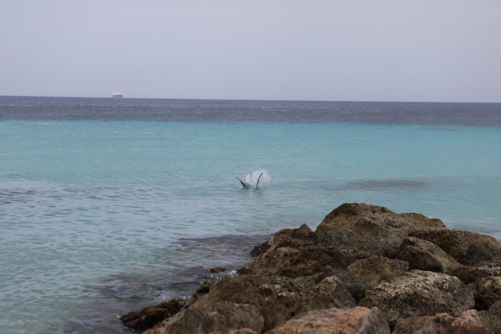 022 258 Playa Porto Marie_resize