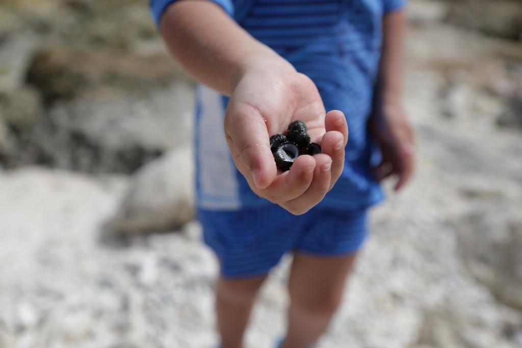 028 264 Playa Porto Marie_resize