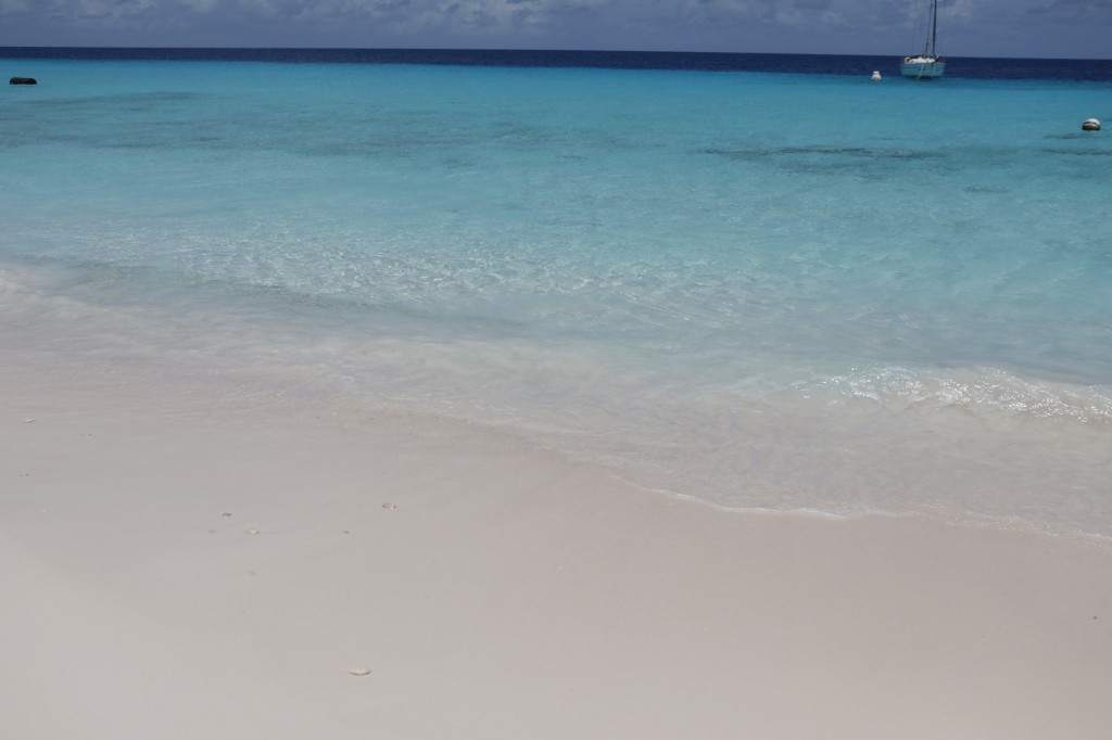 035 238 Klein-Curacao_resize